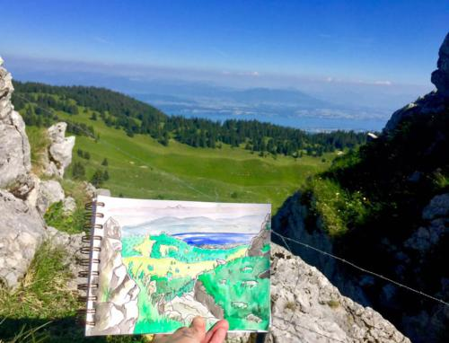 Vue du haut de la Dôle côté Suisse